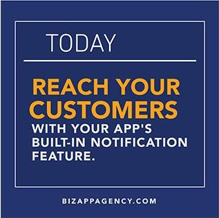 Bizappagency.com